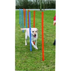 Dog Activity Agility-Slalom Kunststoff blau / orange 12 Stangen 115 x 3 xm Trixie